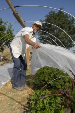 Hoop Houses Extend the Growing Season.