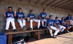 Former Wildcats Back in the Dugout